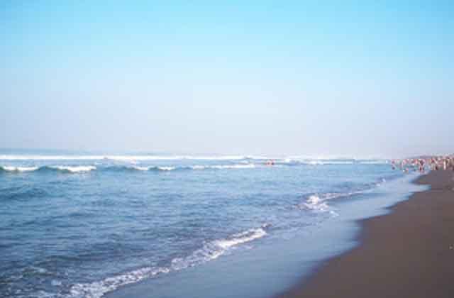 Melihat Tidak Biasa Pantai Ketawang Purworejo Berbeda Kebanyakan Indonesia Memiliki