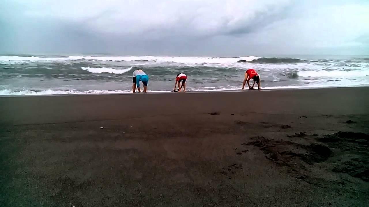 Pantai Ketawang Youtube Kab Purworejo