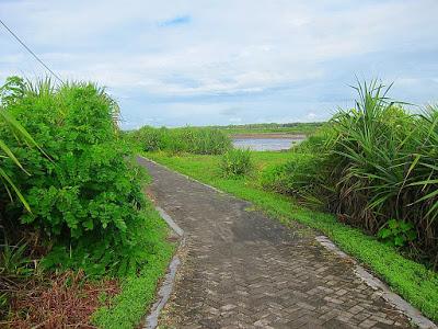 Wisata Purworejo 2 Tempat Pantai Pasir Puncu Kab