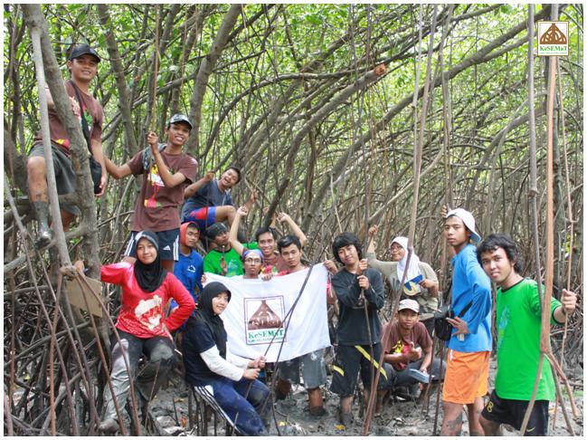 Blog Kesemat Mangrove Lifestyle 10 1 11 Rembang Kesematblog Kesekian