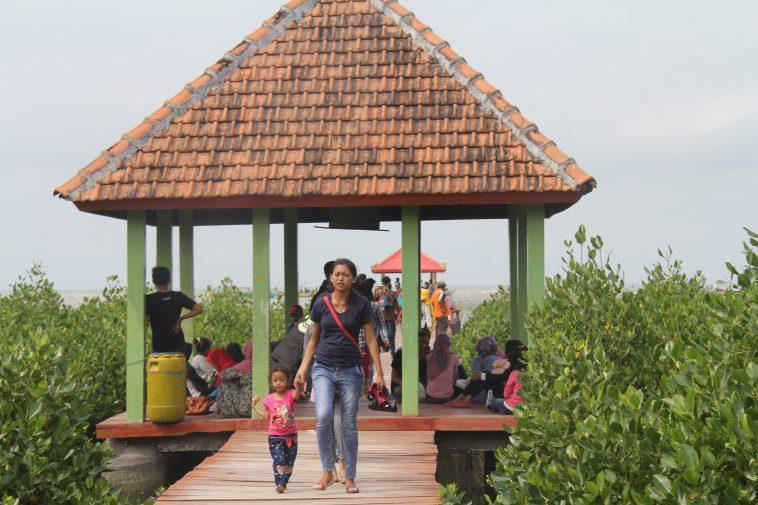 Inilah Lima Tempat Wisata Rembang Direkomendasikan Jembatan Merah Hutan Mangrove