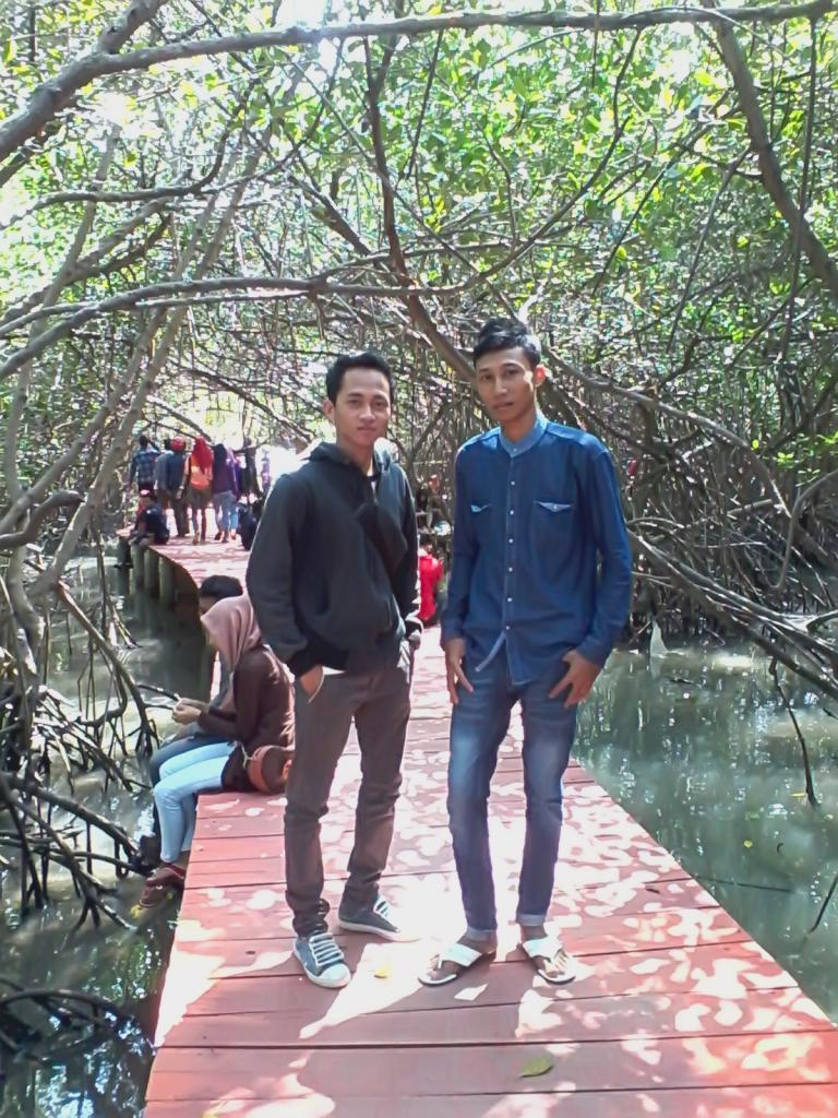 Long Holiday Mangrove Conservation Park Rembang Central Java Senang Bisa