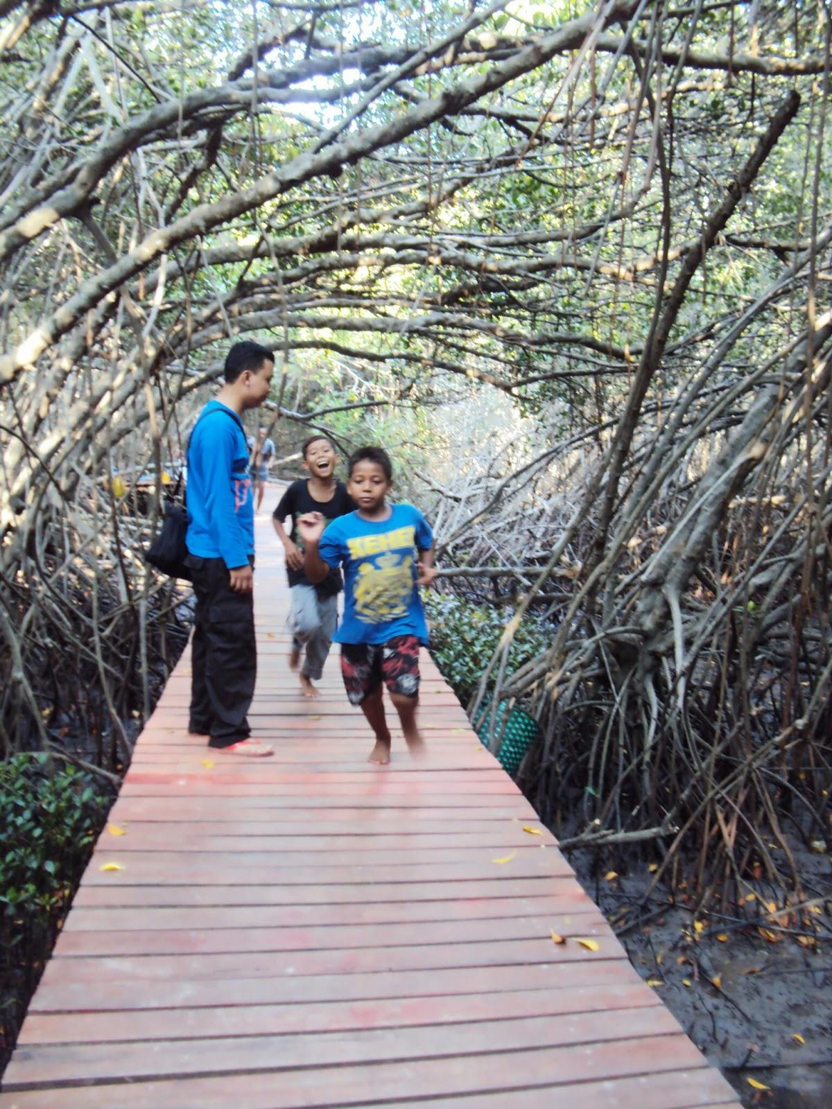 Menyeberangi Jembatan Mangrove Rembang Kesejukan Tengah Hutan Ketika Sampai Jalan