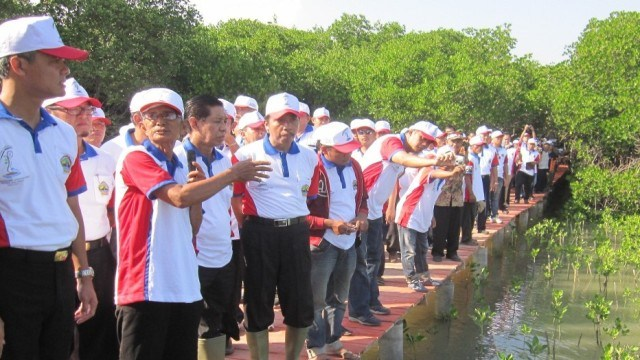 Modal Sosial Bersumbangsih Besar Pengelolaan Kawasan Mangrove Strategis Kunjungan Gubernur