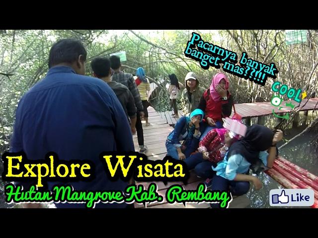 Pacaran Hutan Mangrove Explore Wisata Rembang Uji Mental Jomblo Pasar