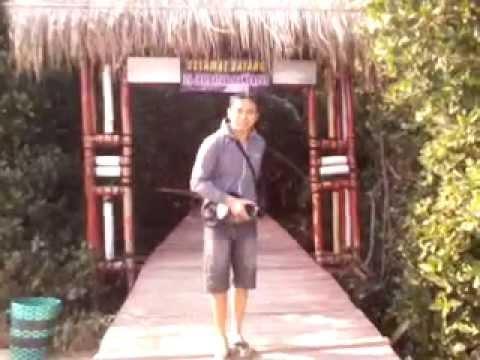 Pesona Hutan Mangrove Desa Pasar Banggi Rembang Youtube Kab