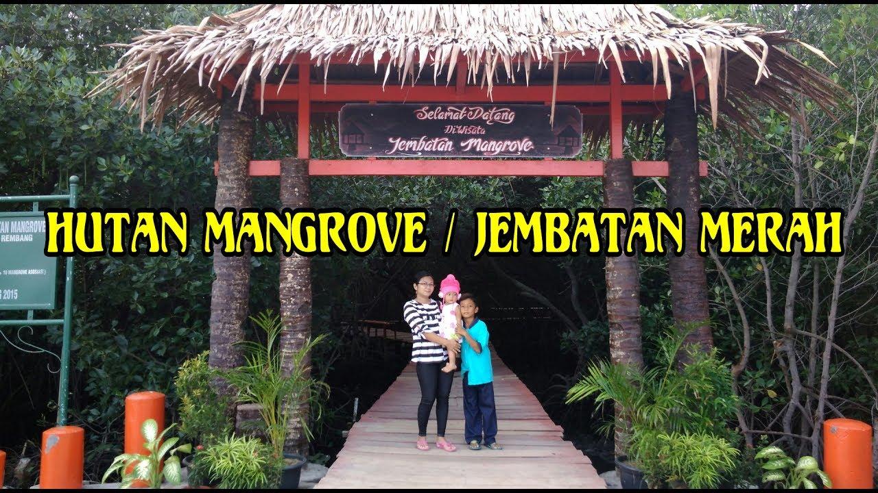 Wisata Alam Hutan Mangrove Jembatan Merah Yg Terkenal Kota Rembang