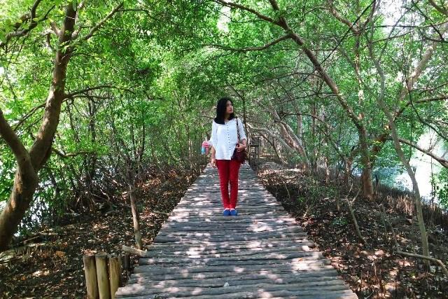 Wisata Hutan Mangrove Pasar Banggi Rembang Jateng Akses Menuju Kab