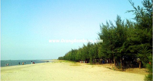 Wisata Rembang Pantai Karang Jahe Kab Hutan Mangrove Pasar Banggi