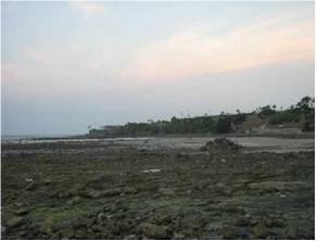 Wisata Bahari Pantai Suko Kawasan Bonang Binangun Sluke Bbs Indah