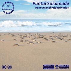 Pantai Caruban Berada Desa Kec Lasem Kab Rembang Kebanyakan Panorama