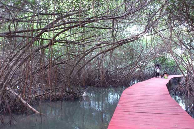 10 Lokasi Wisata Disinggahi Rembang Pantai Jatisari Kab