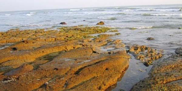 Rembang Wisata Bahari Sejarah Ra Kartini Bola Www Inilah Pantai