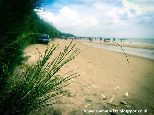 Pantai Karang Jahe Rembang Deretan Cemara Tepi Roeman Art Kab