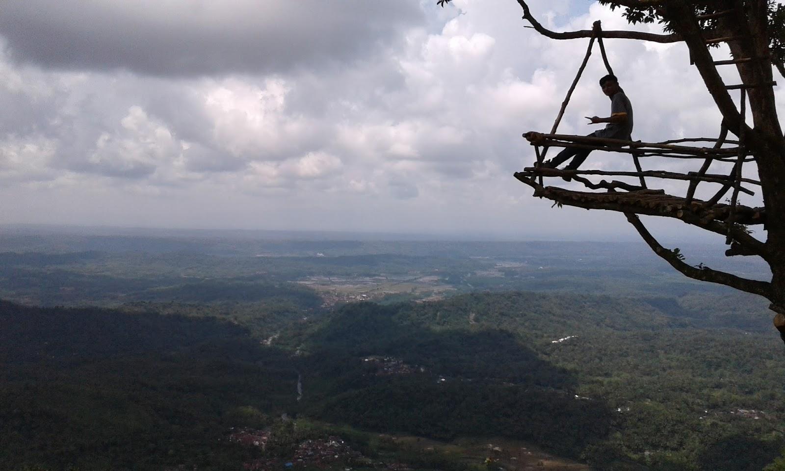 Panorama Menakjubkan Desa Wisata Penusupan Klikanggaran Rumah Pohon Igir Wringin