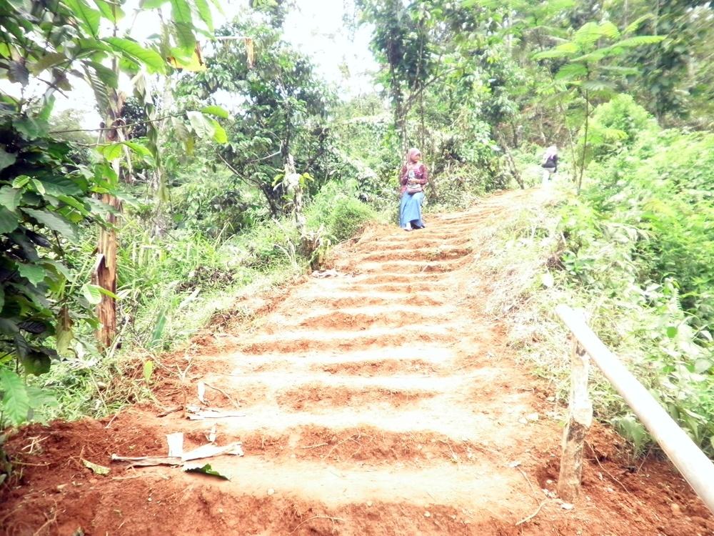 Pesona Rumah Pohon Desa Wisata Panusupan Wajib Dikunjungi Rute Pendakian
