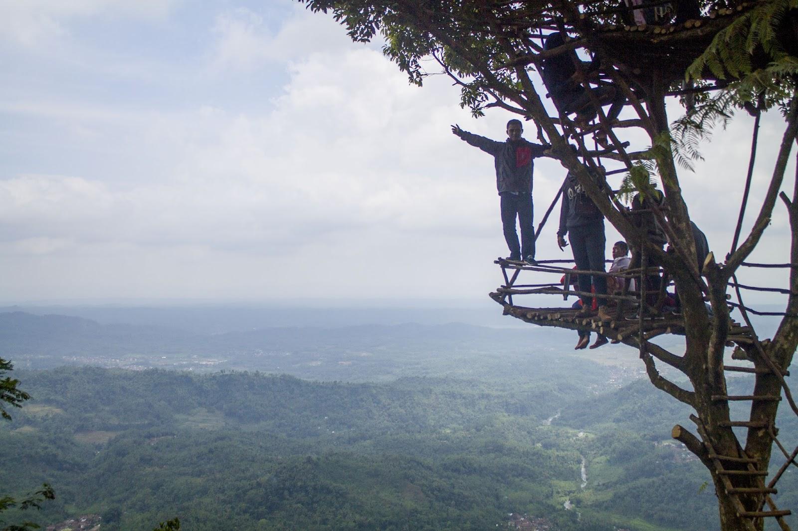 Suarakunangkunang Igir Wringin Rumah Pohon Puncak Purbalingga Kecil Lanjut Perjalanan