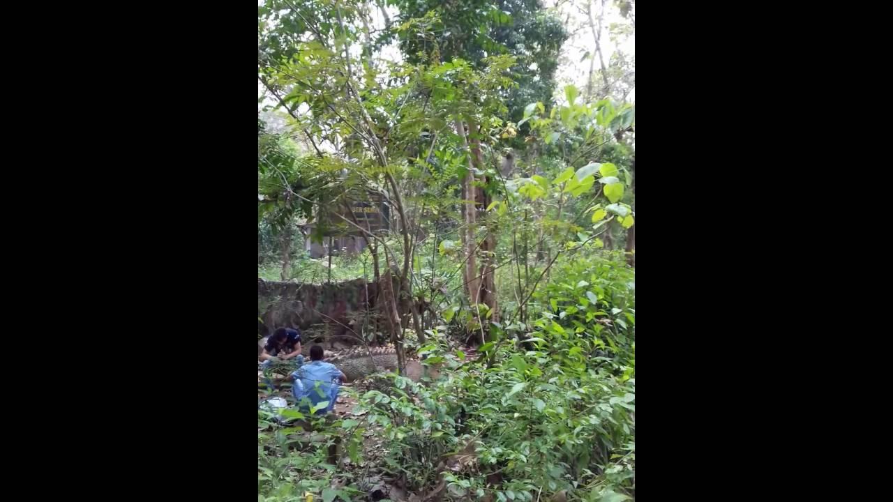 Sumber Semen Sale Rembang Youtube Taman Wisata Alam Kab