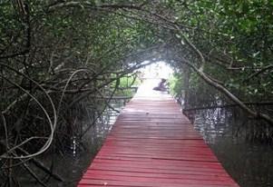 19 Objek Wisata Asli Kota Rembang Jawa Tengah Indah Taman