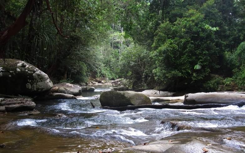 Taman Wisata Alam Twa Hutan Sumber Semen Sale Sungai Walanggabeng