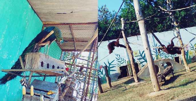 Wisata Kebun Binatang Kabupaten Rembang Wana Kartini Mantingan Kab