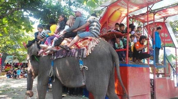 10 Gambar Bonbin Mangkang Taman Margasatwa Semarang Tiket Masuk Keindahan