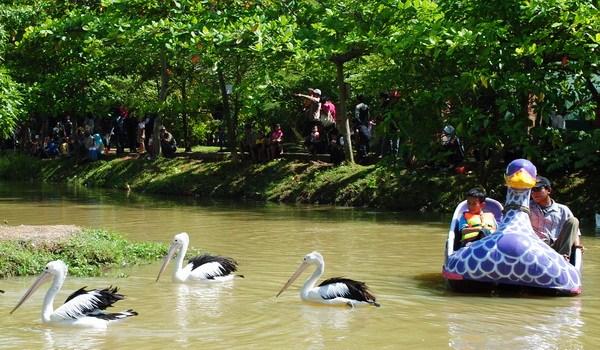 Bonbin Mangkang Kebun Binatang Semarang Taman Margasatwa Naik Perahu Explore