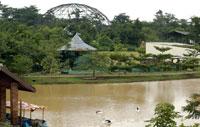 Kebun Binatang Mangkang Semarang Eka Media Center Tak Berkunjung Taman