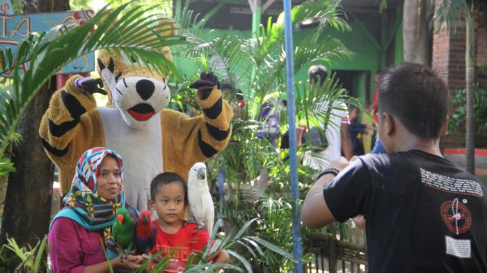 Kebun Binatang Mangkang Tempat Rekreasi Keluarga Semarang Bonbin Kab