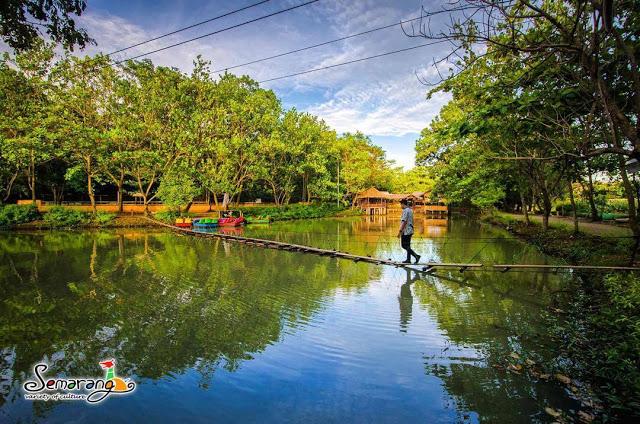 Top 24 Tempat Wisata Semarang Dikunjungi Foto Kebun Binatang Mangkang