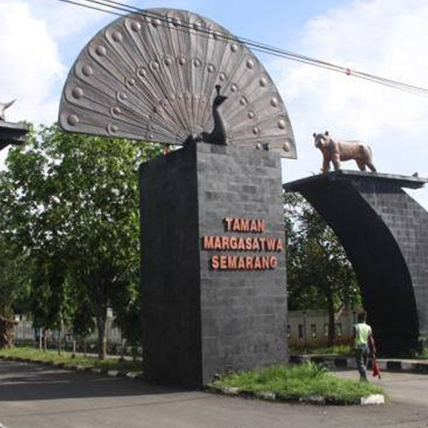 Wisata Edukasi Anak Kebun Binatang Mangkang Semarang Lihat Id Lokasi