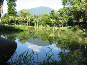 Kampung Seni Lerep Ungaran Kabupaten Semarang Trip Arts Indonesia Sekitar