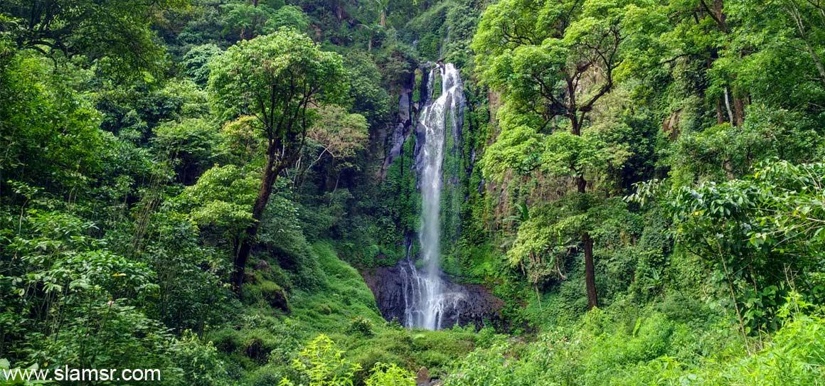 Semarang Menikmati Wisata Permainan Air Artikel Menarik Lainnya Jungle Toon