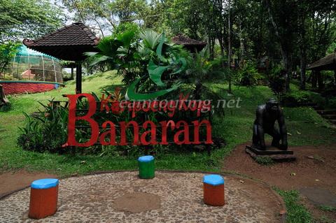 Kampoeng Kopi Banaran Asyiknya Bersantai Sambil Ngopi Agro Taman Semarang