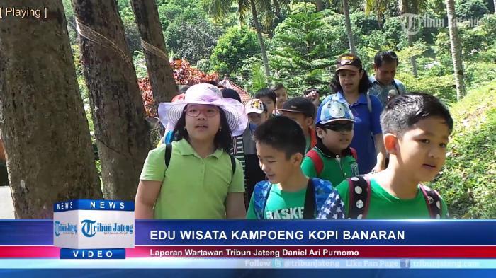 Video Siswa Sd Berwisata Edukasi Kampoeng Kopi Banaran Kabupaten Semarang