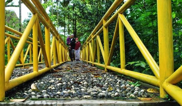 Kebun Durian Wisata Agro Temu Kencono Explore Semarang Berjalan Edukasi