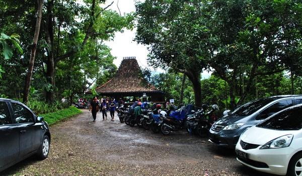 Kebun Durian Wisata Agro Temu Kencono Explore Semarang Edukasi Watu