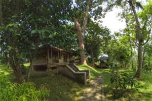 Kebun Wisata Alam Semarang Sekitarnya Galeri Agribisnis Durian Watu Simbar