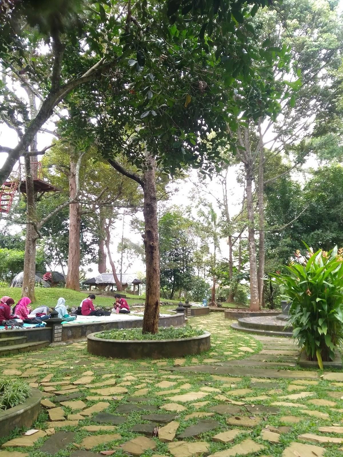 Semarang Coret Kebun Durian Watu Simbar Gunungpati Wisata Edukasi Kab