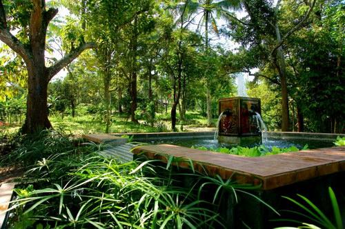 Temu Kencono Kebun Durian Wisata Agro Foto Kolam Air Mancur