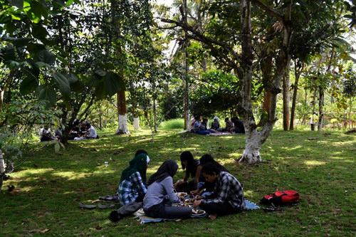 Temu Kencono Kebun Durian Wisata Agro Lesehan Alam Terbuka Edukasi