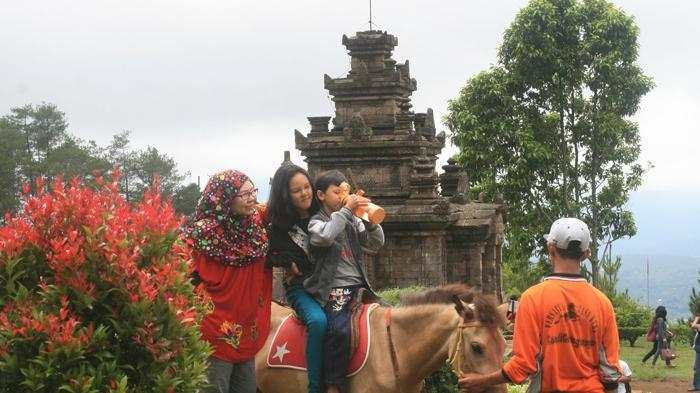 Asyiknya Keliling Candi Gedongsongo Semarang Sembari Menunggang Kuda Sanggar Seni