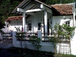 Rumah Dijual Jual Belakang Kampus Universitas Diponegoro Semarang Rumah1 Jpg