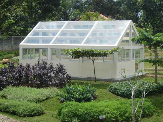 Green House Picture Taman Djamoe Indonesia Semarang Kab