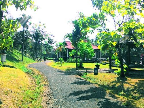 Semarang Coret Piknik Taman Djamoe Indonesia Bergas Kab Spa Tengah