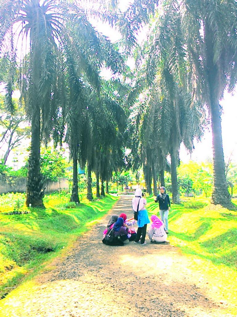 Taman Djamoe Indonesia 2bdjamoe 2bbawen8 Jpg Kab Semarang