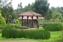 Taman Djamoe Indonesia Gazebo Kab Semarang