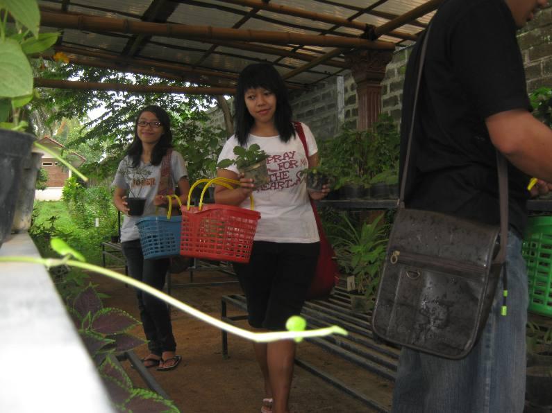 Traveling Taman Djamoe Indonesia Swalayan Tanaman Obat Kab Semarang