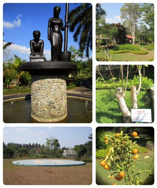 Wisata Sehat Taman Djamoe Journey Love Stories Impian Ibu Meneer