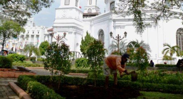 Foto Taman Kota Semarang Dibenahi Pekerja Mencangkul Tanah Ditanami Tanaman